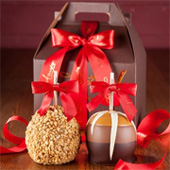 Red Gable Gift Pack
